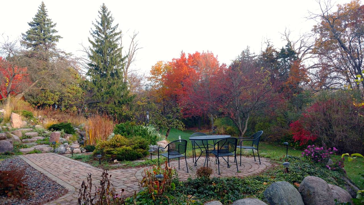 Water garden, lower patio and pool in fall.